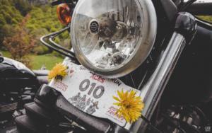 2019-05-25-Wildust-kaou (38)